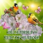 Прислать открытку весна