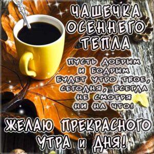 Доброе утро картинки, картинки утро чашечка тепла, позитивного утра, картинка утро доброе настало, с добрым утром открытки, с пожеланием хорошего утра, доброе утро осень кофе, утро кофе надпись, удачного утра открытки, осеннего красивого утра, осень утро пожелание, восхитительного утра, бодрого тебе утра, солнечного утра