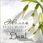 Чудесного весеннего дня