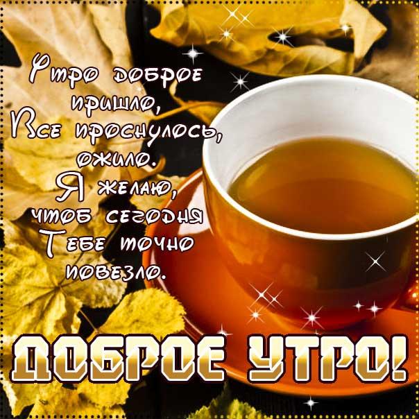 С добрым утром! Осень, замечательного утра, теплого утра, нежного утра, доброе утро чудесного солнечного дня, прекрасное утро, ласкового утра