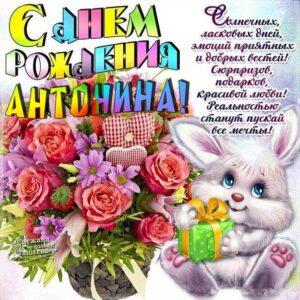 С днем рождения Антонина картинки. Мультяшка, букет цветов, поздравительная надпись