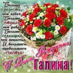 Галина мерцающие гифы день рождения