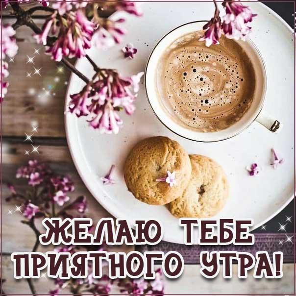 Доброе утро, позитивного утра, приятного утра, энергичного утра, феерического утра, насыщенного радостью утра, прелестное утро
