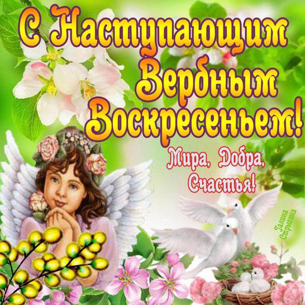 Вербное воскресение, с наступающим вербным воскресеньем, воскресение вербное