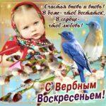 Православные открытки вербное воскресенье
