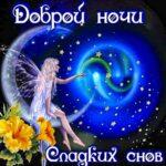 Спокойной ночи приятных снов