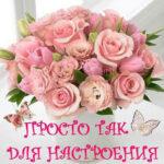 Тебе открытка цветы